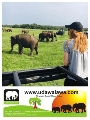 Udawalawa.com